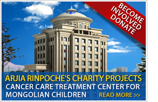 Arjia Rinpoche's Charity Projects